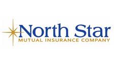 north star insurance logo